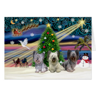 クリスマスの魔法SkyeTerrierTRIO グリーティングカード