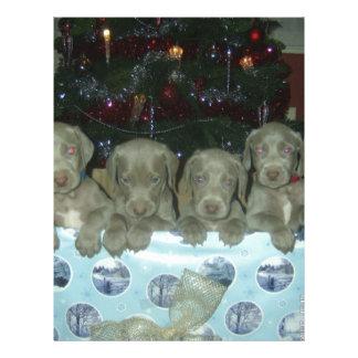 クリスマスのWeimaranerの子犬 レターヘッド