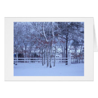 クリスマスカード-マーサのブドウ園のコレクション カード
