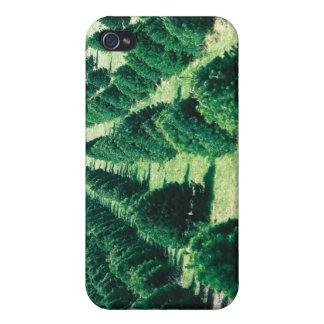 クリスマスツリーの農場 iPhone 4/4Sケース