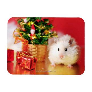 クリスマスツリーを持つハムスターKokolinka マグネット