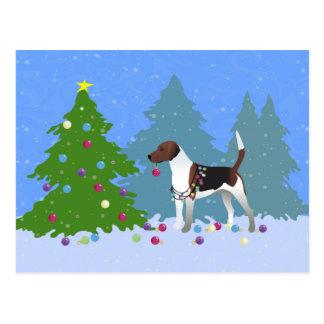 クリスマスツリーを飾っているハリアーかビーグル犬 ポストカード