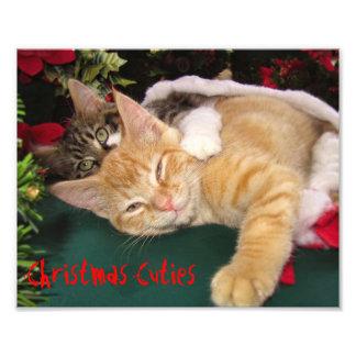 クリスマス猫、抱き締めているかわいい子ネコ子猫のスマイル フォトプリント