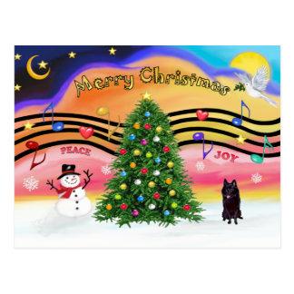 クリスマス音楽2 -スキッパーキ ポストカード