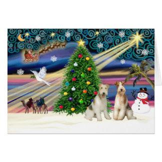 クリスマス魔法ワイヤーフォックステリア犬の組 カード