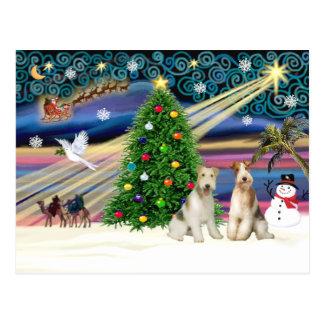クリスマス魔法ワイヤーフォックステリア犬の組 ポストカード