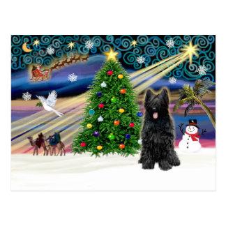 クリスマス魔法Briard Blk ポストカード