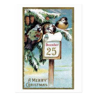 """""""クリスマス鳥""""の- 1900年の郵便はがき ポストカード"""