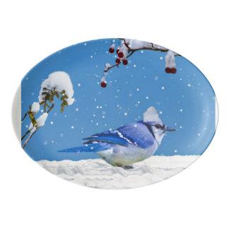 クリスマス、アオカケスの鳥および雪 磁器大皿