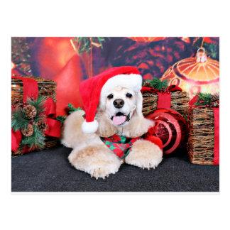 クリスマス-コッカースパニエル- Tobey ポストカード