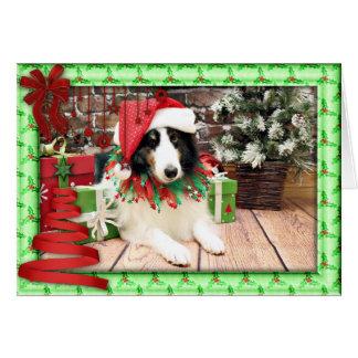 クリスマス-シェットランド・シープドッグ-強盗 カード