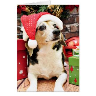 クリスマス-ビーグル犬-ベイリー カード