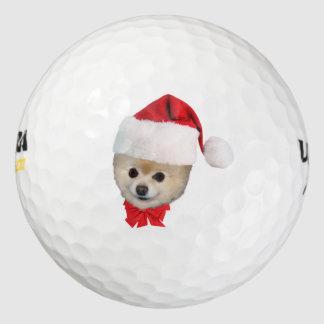 クリスマス、ポメラニア犬犬、サンタの帽子 ゴルフボール