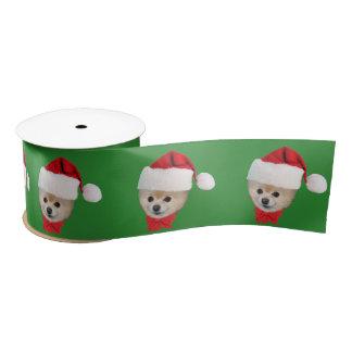 クリスマス、ポメラニア犬犬、サンタの帽子 サテンリボン