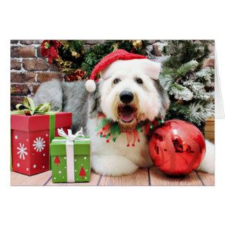 クリスマス-古い英国の牧羊犬- Alphy カード