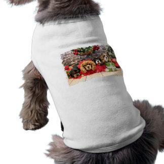クリスマス-騎士-スイートピー、ユリ、ばら色のケシ ペット服