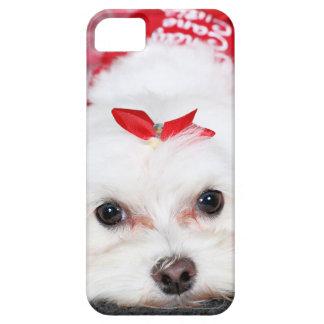 クリスマス- Tinkerbell -マルチーズ iPhone SE/5/5s ケース