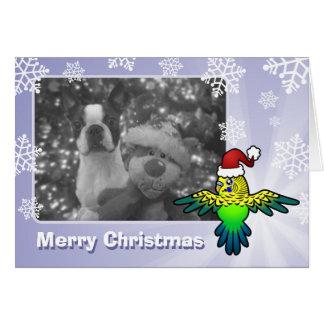 クリスマスBudgie カード