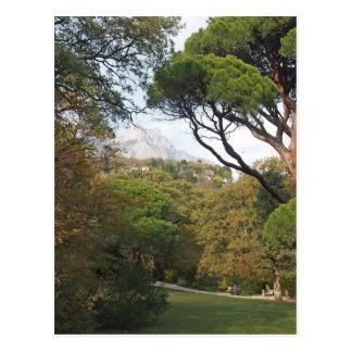 クリミア、山Aiペトリの公園からの眺め ポストカード