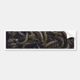 クリーパーの幼虫 バンパーステッカー