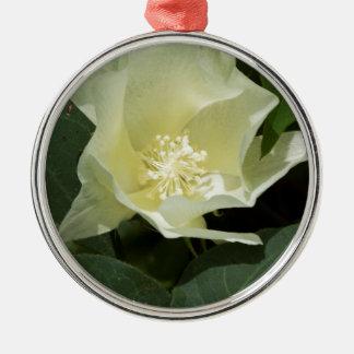 クリームがかった白の綿植物の花 メタルオーナメント