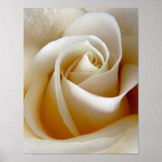 クリームのばら色の結婚式の写真 ポスター
