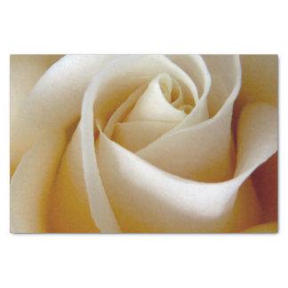 クリームのばら色の結婚式の写真 薄葉紙