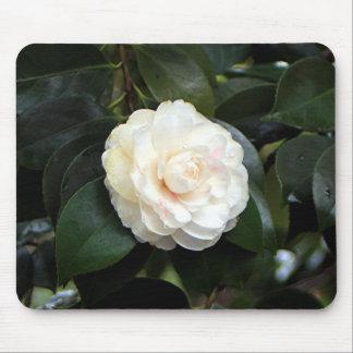 クリーム色の白いツバキの花 マウスパッド