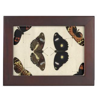 クリーム色の背景のカラフルな蝶メドレー ジュエリーボックス