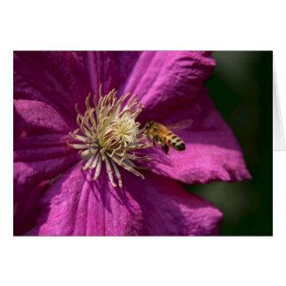 クレマチスの花の蜂蜜の蜂 カード