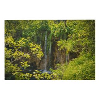 クロアチアのPlitvice湖の国立公園 ウッドウォールアート