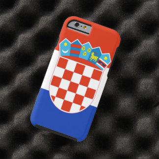 クロアチア ケース