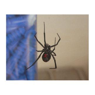 クロゴケグモのくも ウッドウォールアート