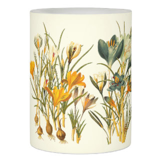 クロッカスによっては植物の花のヴィンテージが開花します LEDキャンドル