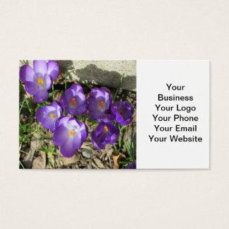 クロッカスの花の紫色 名刺