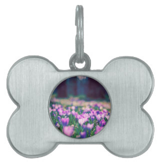 クロッカスの花 ペットネームタグ