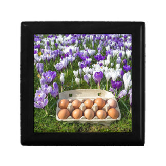 クロッカスの鶏の卵が付いている鶏卵箱 ギフトボックス