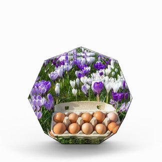 クロッカスの鶏の卵が付いている鶏卵箱 表彰盾