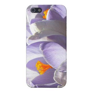 クロッカスのSpeckの紫色のiphone 4ケース iPhone 5 ケース