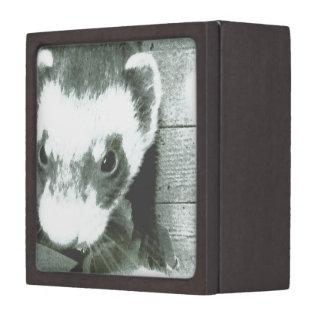 クロテンのフェレットの写真 ギフトボックス