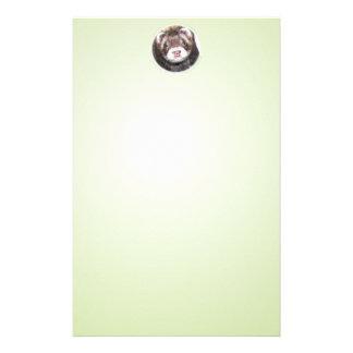 クロテンのフェレットの写真 便箋
