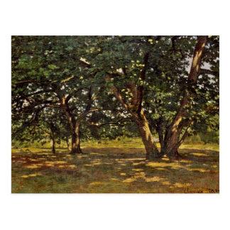 クロード・モネフォンテンブローの森林 ポストカード