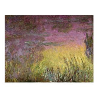 クロード・モネ|の《植物》スイレンの日没1915-26年 ポストカード