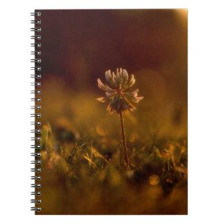 クローバーの花 ノートブック