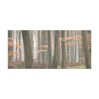 クローバーの車線の霧深い歩行 キャンバスプリント