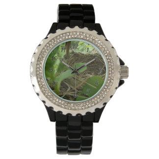 クワの最近造られたしかし空の鳥の巣 腕時計