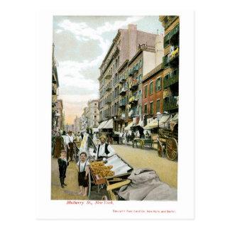 クワSt.、ニューヨークシティ ポストカード