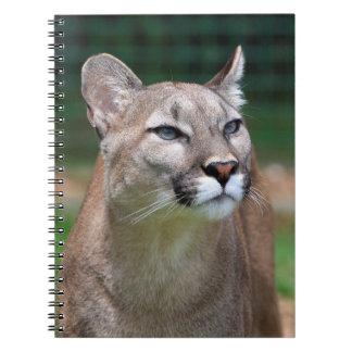 クーガー、オオヤマネコの美しい写真のノート ノートブック