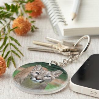 クーガー、オオヤマネコの美しい写真、ギフト キーホルダー