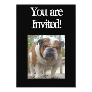 クールな英国のブルドッグの招待状の誕生日かOc カード